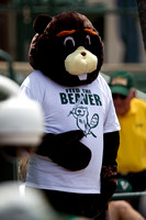 Baylor Feed the Beaver 1736